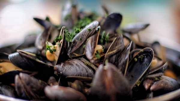 3 recettes de moules marinières qui changent des moules marinières…